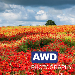 Landscape Photography by Andrew Chorley - AWD Photography
