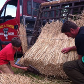 Nigel & son George demonstrating thatching at a village show